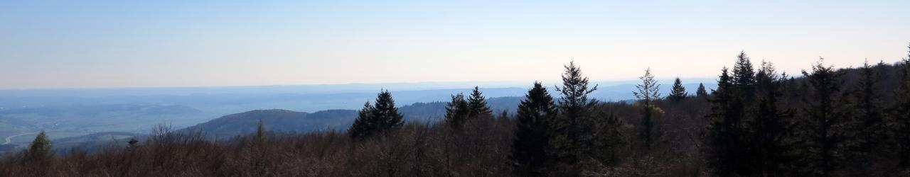 Imsbach_Ansicht_15_1280x250.jpg